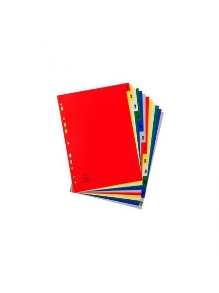 Exacompta Разделители пластиковые, цифровые 1-12, ф.А4 maxi, ассорти